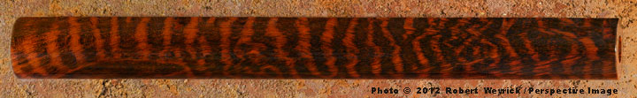 snakewood blank for making a flute